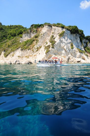 Turtle Spotting in Zakynthos | Manthos Tours Agios Sostis - Click Image to Close